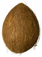 Fett in der Kokosnuss