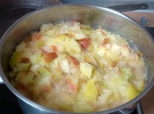 Apfelkompott ohne Zucker selber machen