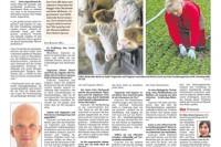 HNA-Artikel