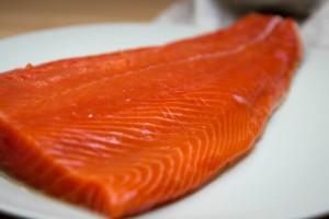 Verursacht die Aquakultur Umweltprobleme?