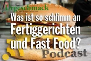 Was ist so schlimm an Fertiggerichten und Fast Food?