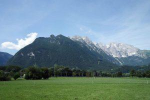 Heumilch aus Österreich